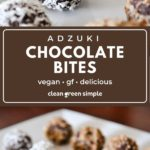 Vegan Chocolate Bites