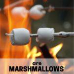 Are marshmallows vegan?