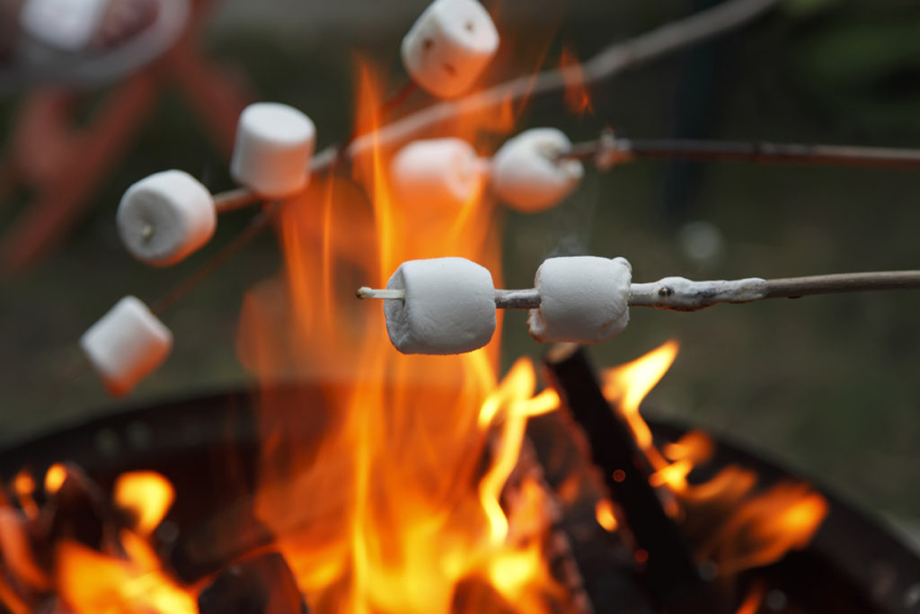 Are Marshmallows Vegan?
