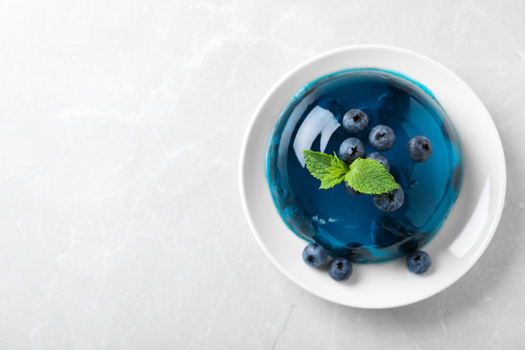 Delicious vegan gelatin substitute with blueberries and mint on grey table