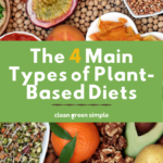 THE 4 MAIN TYPES OF PLANT BASED DIETS - PIN IMAGE