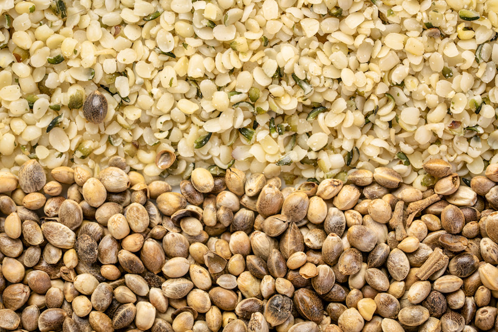 close up of dry hemp seeds and hemp hearts