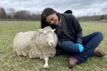Visit Woodstock Farm Sanctuary's Adorable Farm Animals from Your Couch