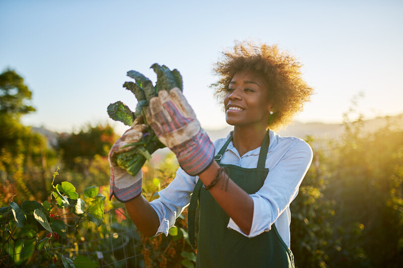 Young African American woman holding kale
