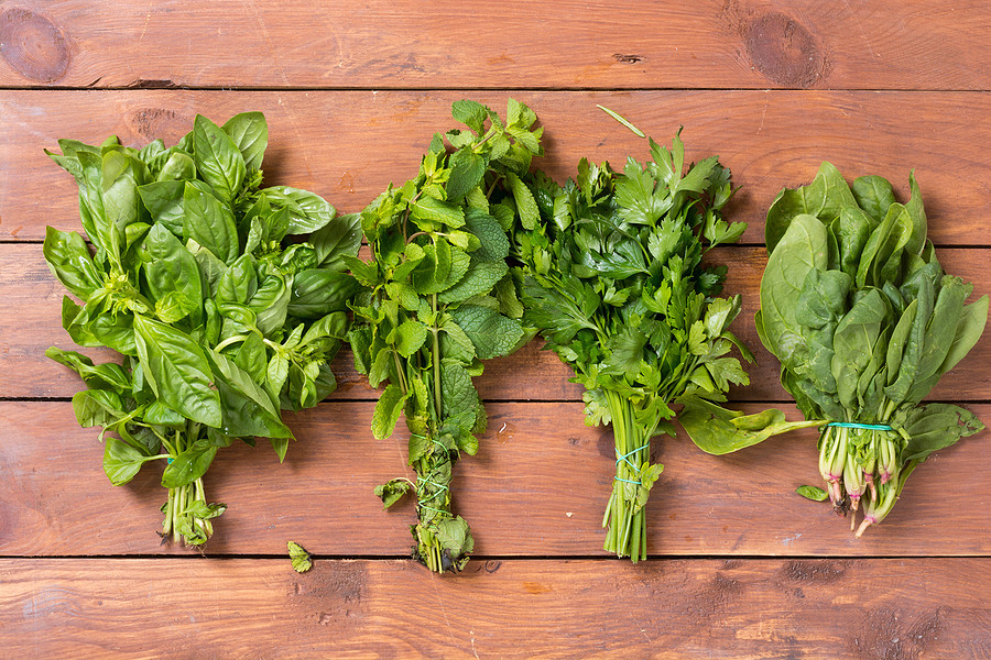 Stalks of basil, mint, parsley, and spinach bound together with rubber bands on a wooden table.