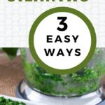 how to freeze cilantro