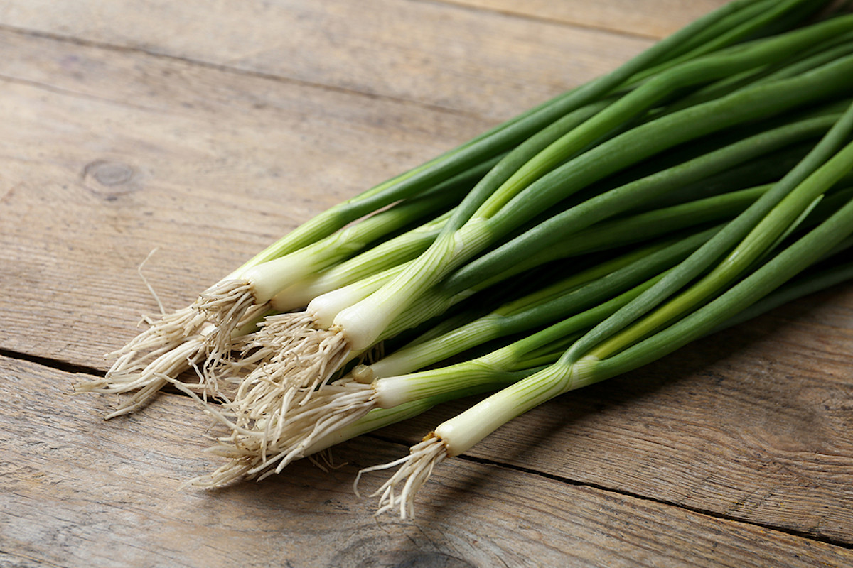 Fresh green onions on a wooden table