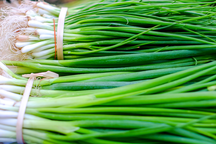 Bunches of scallions on display at a food market