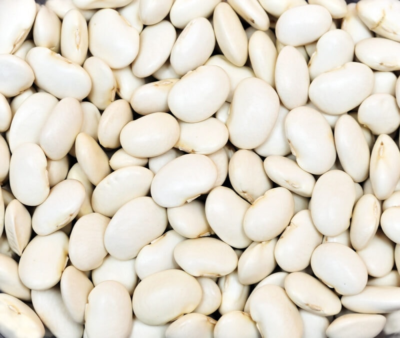 15 Completely different Forms of Beans (with Footage!)