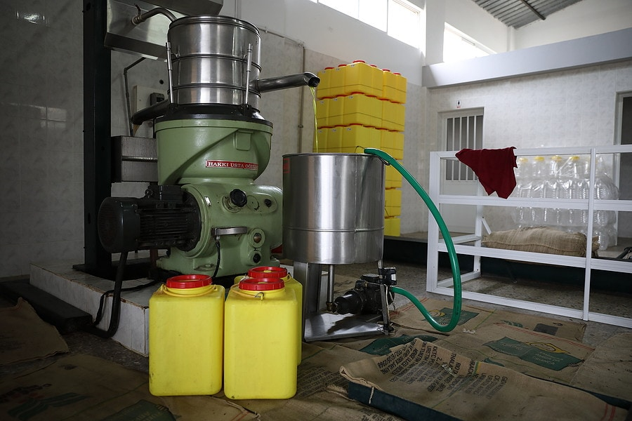 An oil press machine for cold pressing