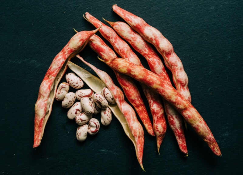 cranberry beans on black background