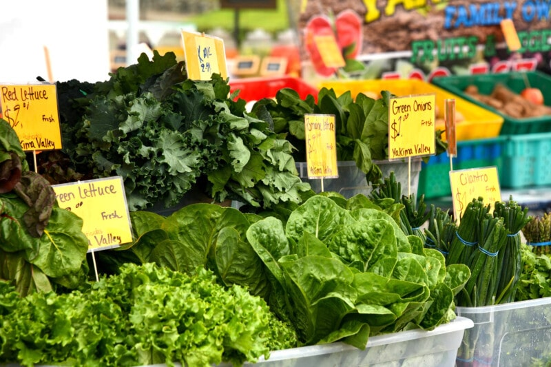 Different types of lettuce and greens at a farmer's market