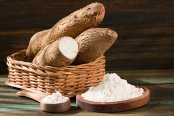Tapioca starch from cassava root